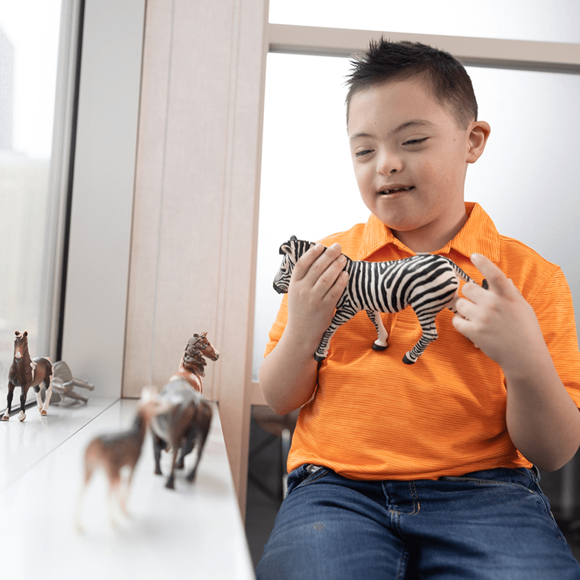 Young boy with Down syndrome playing with zoo animal toys